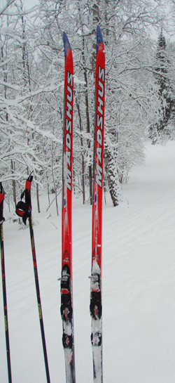 Cross Country Skis in Snowbank